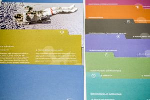 Divisional Brand Identity | INDUSTRY FORUM